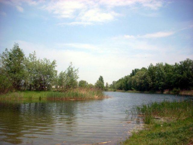 Места для отдыха в Кракове. Przylasek Rusiecki